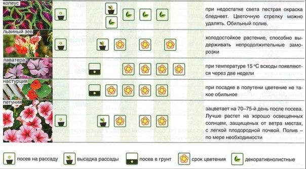 таблица 1_2
