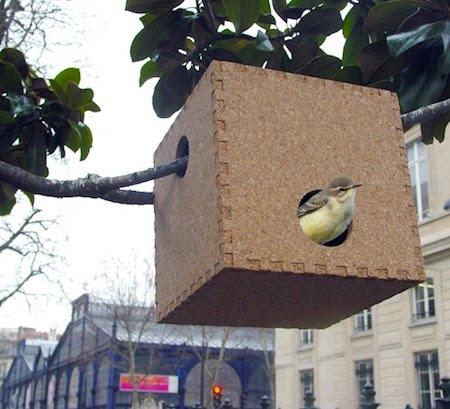 nestors-nest1